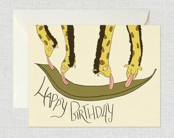 Happy Birthday Card (Giraffes)