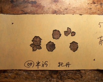 Large Japanese Floral Stencil No. 5 - Neutral Wall Decor