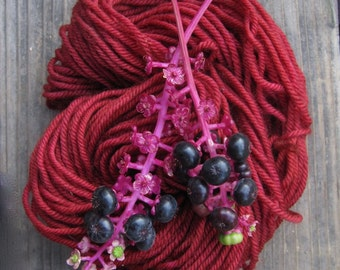 Pokeberry Natural Dye seed 2016