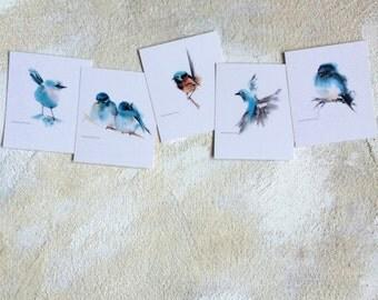 Bird Postcard Set, Set of 5, Bird Painting, Cute Birds, Sky Blue, Watercolor Painting Art Card