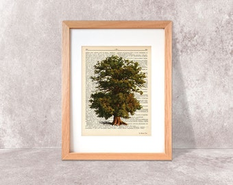 Majestic oak tree print-tree print-Oak tree on book page-Botanical print-Nature print-Dictionary tree-trees print set-NATURA PICTA-NPDP078