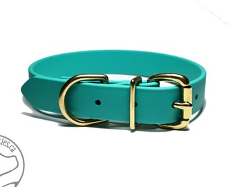 "NEW - Teal Dog Collar - 1"" (25mm) Wide Dog Collar - Beta Biothane - Your choice of: Stainless Steel or Solid Brass Hardware - Custom Sizes"