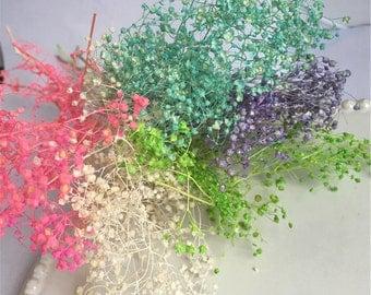 1bag/2g  Mini Dry Flowers  mix colors / Dried Flowers