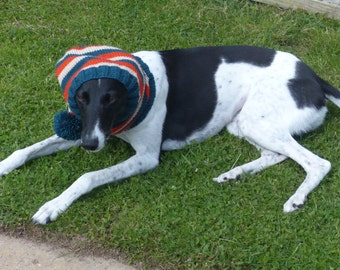 Bobble hat for greyhound type