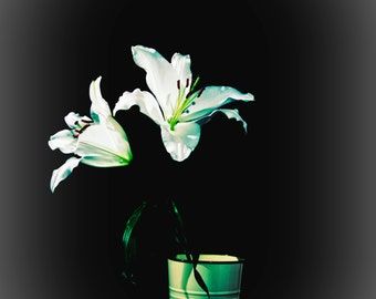 Lillies In Vase