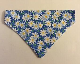 Dog bandana, Daisy's