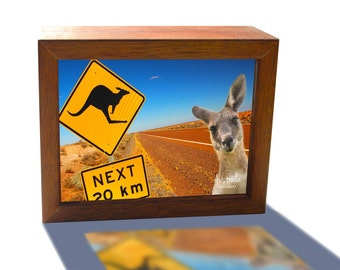 Kangaroo photo-bomb in the Australian Outback