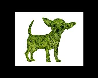 Chihuahua Topiary Print