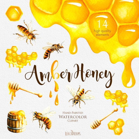 Watercolor Honey Bee Clipart Honeycomb Hand painted by ...