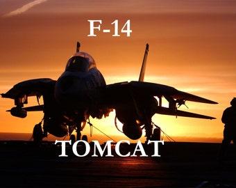 F-14 Art Prints, Military Art Prints, Art Prints, Military Fighter Jet, Jet Plane, F-14 Tomcat,