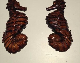 Sea horse pair.