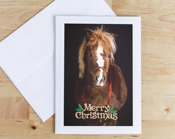 Christmas Greeting Card, Horse Holiday Card, Christmas Notecard, Equine Greeting Cards, Horse Photograph, Photo Note Cards