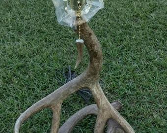 Mule Deer Antler Lamp