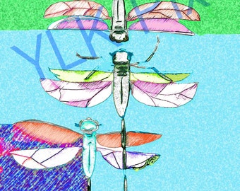 Three Dragonflies, Greens, Blues, Original Drawing, Bright, Whimsical