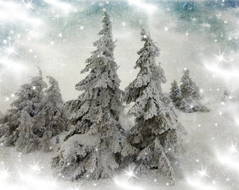 Frozen Tree Backdrop - Christmas, winter, snow forest - Printed Fabric Photography Background G1283