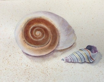 Shells Watercolor, Seashells Watercolor, Original Watercolor Painting