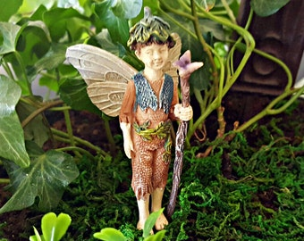 Miniature Fairy Lucas