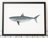 Shark decor Beach house poster Nautical print Nursery print ACW415