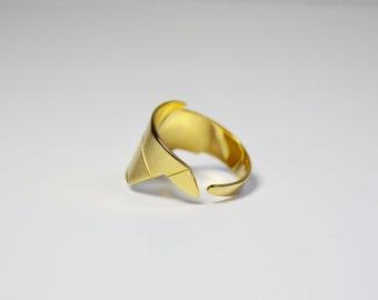 "Ring ""Tit"""
