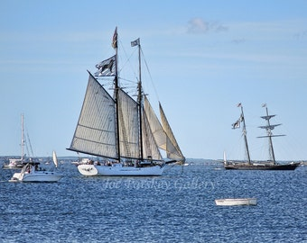 Black Dog Tall Ships, Vineyard Haven, Martha's Vineyard, sailing, nautical themes, photo art, home decor, wall art, archival, by Joe Parskey
