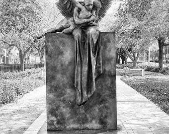 Photography-Fallen Angel- Print: 11x14