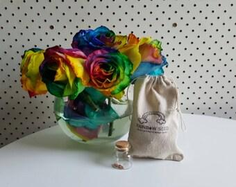 Rainbow rose seeds x 10