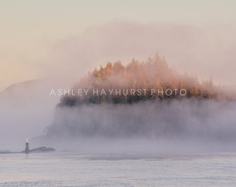 Into The Mist, Inside Passage, Canada   8x10 Print Matted to 11x14