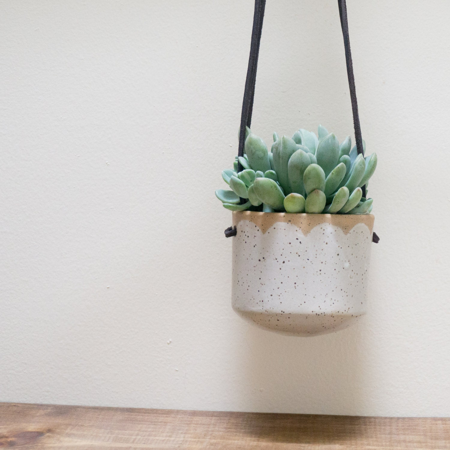 Ceramic Hanging Wall Planter Succulent Pot By