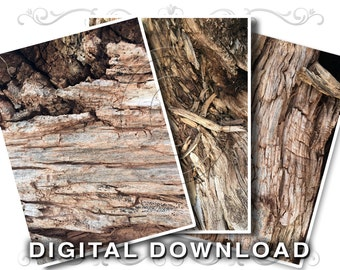 3 Rotting Stump Rustic Wood Background Images | Weathered Wood Stock Photography Clip Art Photos | Small Business Commercial Use | Wood05