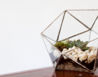 Glass Terrarium - Simple Icosahedron / Geometric Terrarium / Display Box / Candle Holder by Geodesium