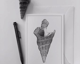 Greeting Card - Conical Shell 1