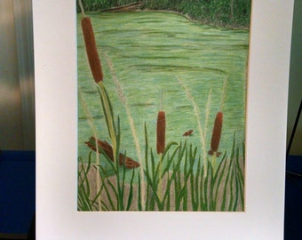 Cattails print 8x10 matted to 11x14