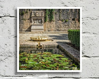 Fine Art Print, Pool of Water Lilies and Fountain Beyond on a Warm Afternoon, Palacio de Generalife, Granada, Spain