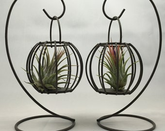 Air Plant Holder or Hanger, Wall Mount For Hanging, Air Plant holder, Home Decor, Perfect Gift For Any Occasion.