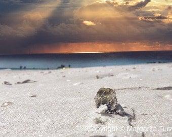 Lido Beach  - Fine Art Photograph - Art Print - Digital Art