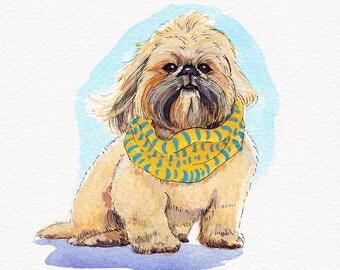 Custom Pet Illustration