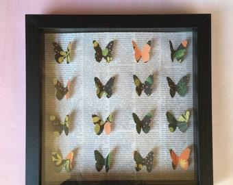 Framed 3-D Butterfly Art 9x9 Shadowbox