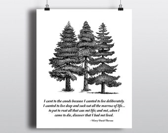 I Went To The Woods Quote, Henry David Thoreau Print, Tree Illustration, Outdoorsy Art Print, Literary Quote, 8x10 Printable Wall Art