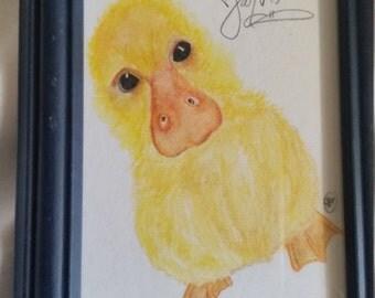 Jarvis the duckling 4x6 framed artwork