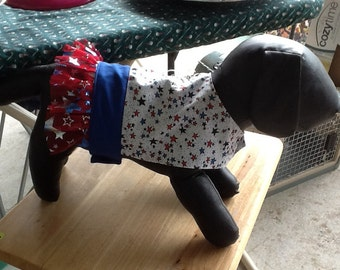 Handmade dog dress
