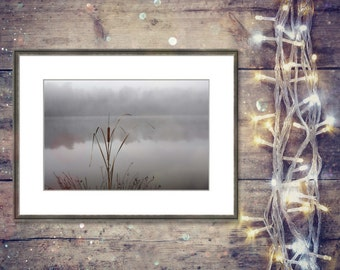 Cattail Bouquet photograph fine art print chromogenic c-print cattails foggy lake Yates Mill pond artwork Nikon camera