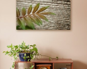 Canvas printing | green leaf on barn wood background macro photography | rustic look