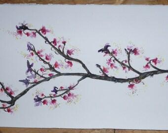 Original Watercolour - plum blossoms