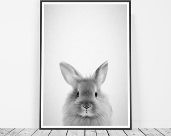 Woodland Nursery Decor, Forest Animals, Bunny Rabbit Art, Woodland Animals, Nursery Rabbit Print, Bunny Nursery Art Print, Baby Rabbit Art