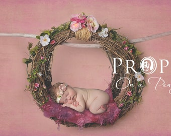 Hanging newborn nest _ studio digital backdrop, Newborn Photography props