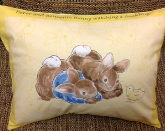 Peter Rabbit and Benjamin Bunny Watching a Duckling Pillow