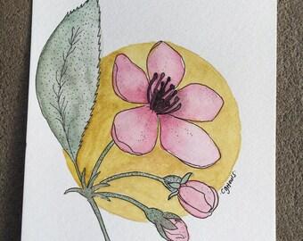 Magnolia - Original 5 x 7 Watercolor Painting