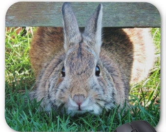Rabbit Photography Mousepad Mouse Pad 'Under the Fence' Nature Wildlife Wild Bunny Photograph Photo Rabbits Bunnies Close Up Animal Picture