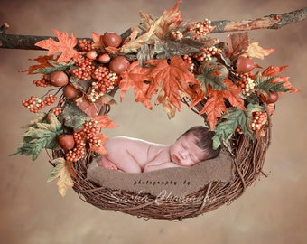 Digital backdrop background  newborn baby boy or girl fall autumn colorful brown