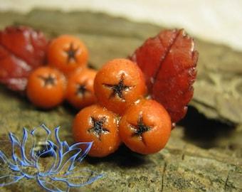 Stud Earring,earrings studs with rowan,earrings with berries,orange earrings Berry earrings, handmade earrings made of clay